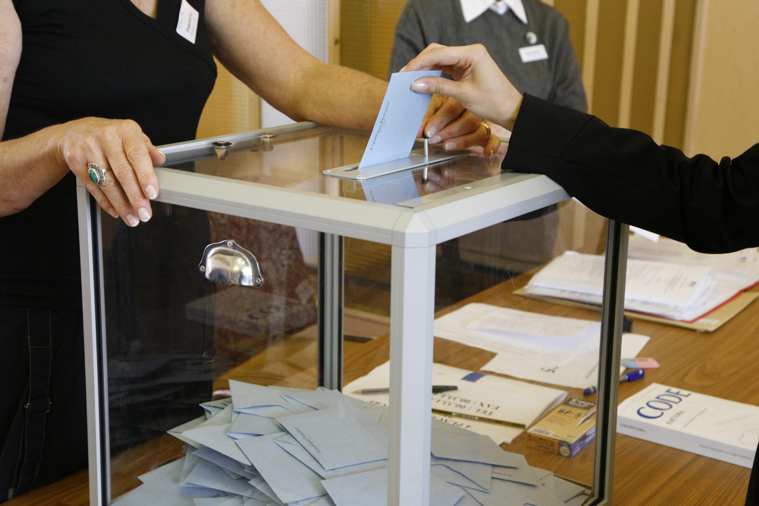avocat -droit élus et élections